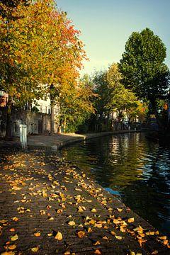 De werven van de Oudegracht in de herfst van De Utrechtse Grachten