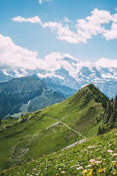 Zonnige Zwitserse Alpen van
