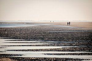 Ochtendwandeling op de strand bij Ouddorp