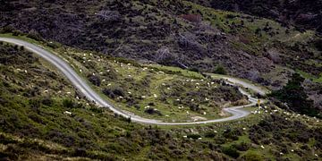 Nevis Road Curves van Keith Wilson Photography