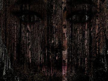 Königin des dunklen Waldes von Maurice Dawson