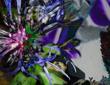 Blüte van Helmut Englisch