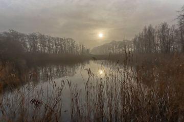 """Ondergaande zon bij de """"Plas van Gent"""" in Ede (Nederland) van Eric Wander"""
