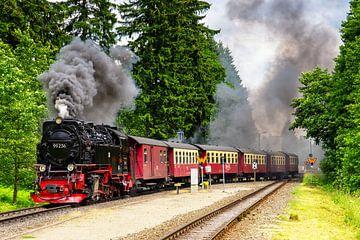 Dampfzug im Harz von Jan van Broekhoven