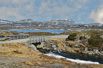 Norwegen, Frühling von Michael Schreier