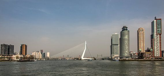 Rotterdam van Harrie Muis