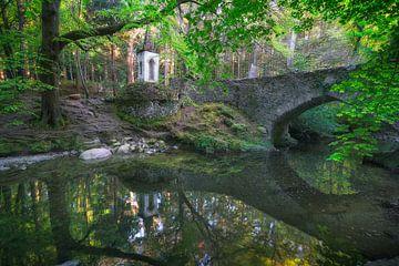 Alte Brücke in Tollymore Wald von Roelof Nijholt