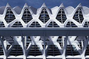 Museum van wetenschappen (Valencia) van