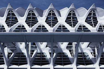 Museum van wetenschappen (Valencia) von Wesley Flaman