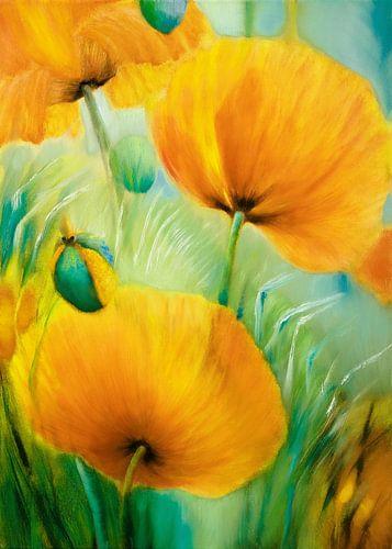 Poppy van Annette Schmucker