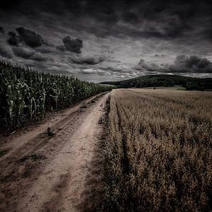 Between fields, the other side van