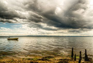 Vejle Fjord - Boot in de zee van Tony Buijse