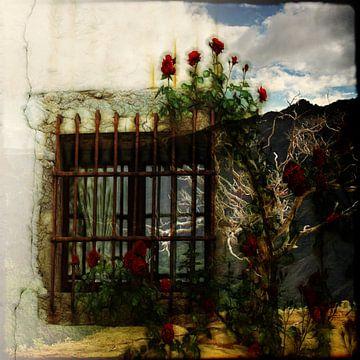 Fenster in meine Seele von Karin Schwarzgruber