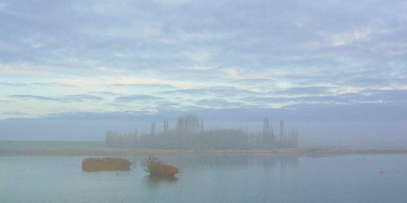 Mist op de schellinkhouterdijk van Nathalie Pol