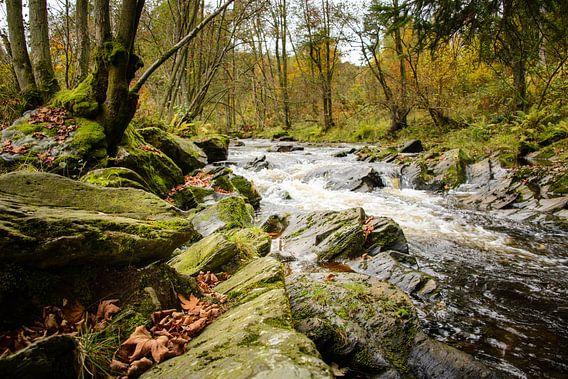 Rivier in de Eifel (Duitsland) van Bas Wolfs