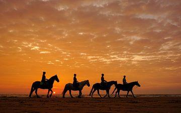 Paarden op het strand sur Dirk van Egmond