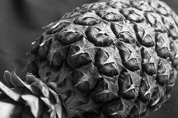 Künstlerische Ananas von Charlotte Serrarens