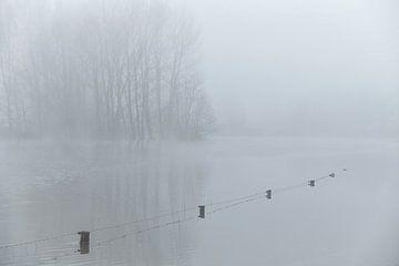 Mist en hoogwater in de uiterwaarden van Cor de Hamer