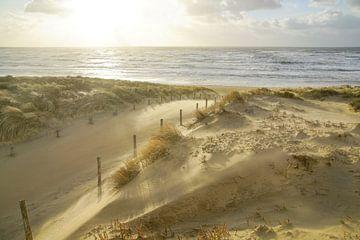 Plage, mer et soleil par un soir d'orage ! sur Dirk van Egmond