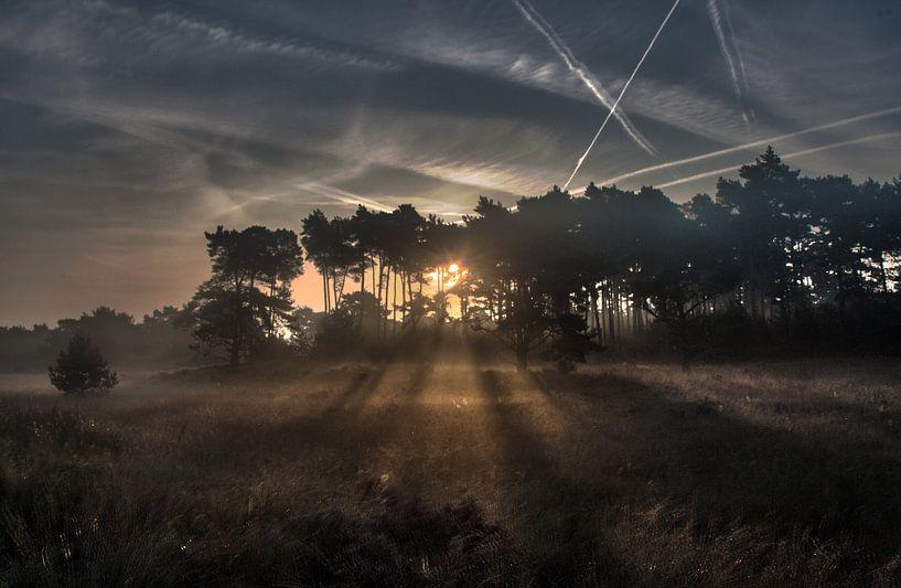 Nazomerse zonsopkomst van Mark Balster