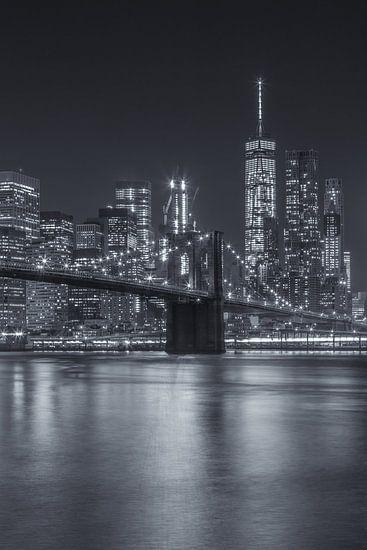 New York Skyline - Brooklyn Bridge 2016 (13)