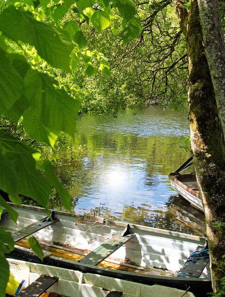 Irischer Bootsanleger von Andrea Fettweis