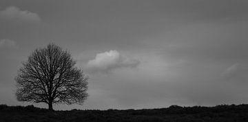 Eenzaamheid von Marieke Suk