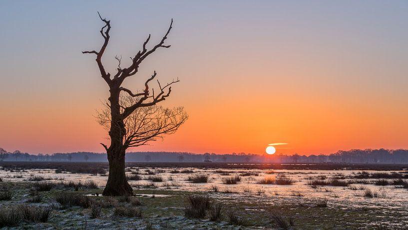 Zonsopkomst in Meppen van Hans Jansen - Lynxs Photography