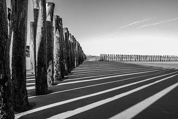 Schatten von Alain Deroef