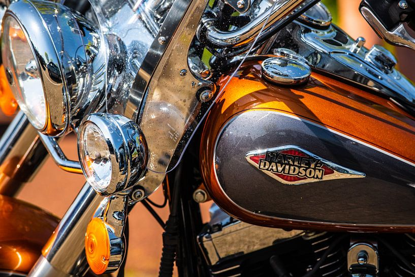 Harley Davidson van Brian Morgan