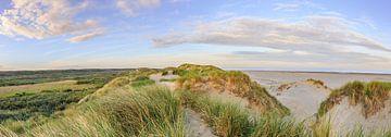 Duinen Nederlandse kust tijdens zonsopkomst van