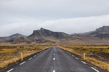 De eenzame lege weg naar de bergen van Stephan van Krimpen