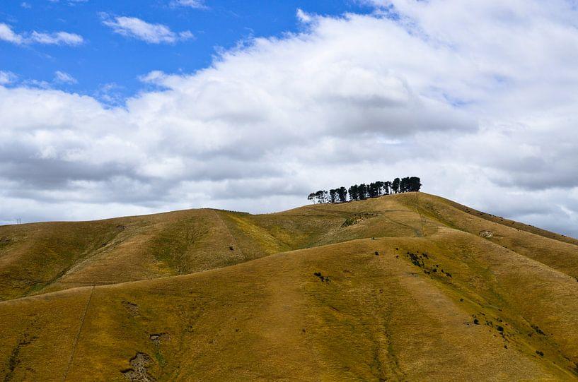De heuvels van Blenheim - Nieuw Zeeland van Ricardo Bouman