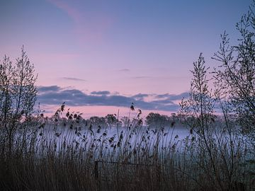 Before sunrise van Diane van Veen