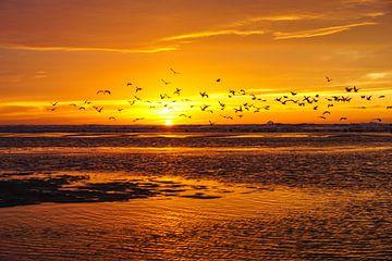 Zon, zee en strand sur Dirk van Egmond