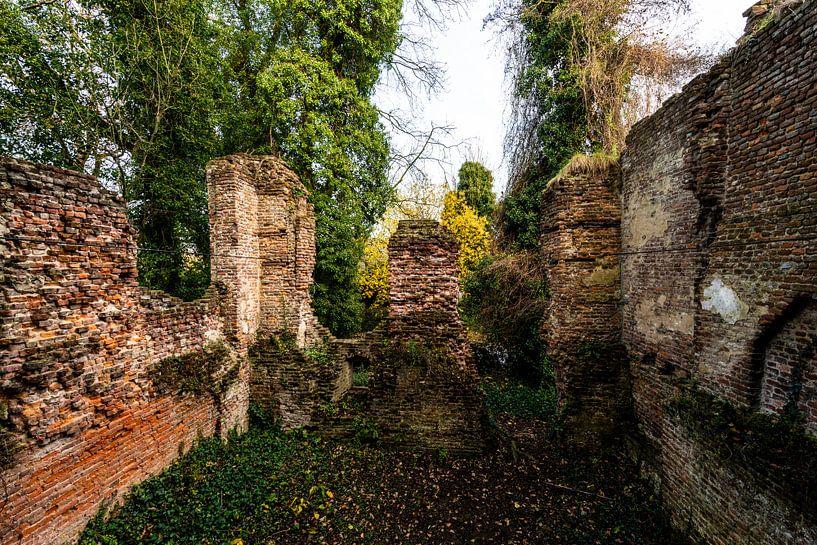 Vervallen ruine  in Holland von Brian Morgan