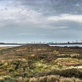 Panorama Oostvoorne sur Frans Blok