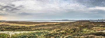 Panorama Oostvoorne van