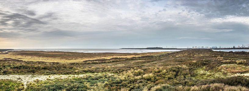 Panorama Oostvoorne van Frans Blok