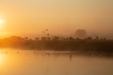 Sonnenaufgang von Kim Leen