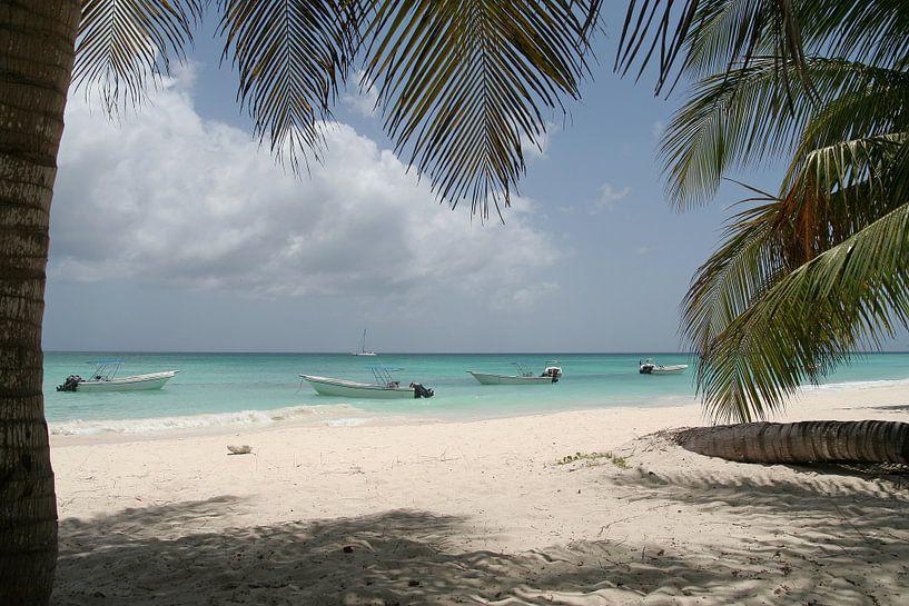 Tropisch strand van Bart van Dinten
