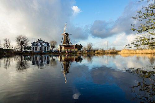 Molen in Rotterdam