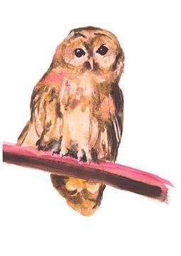 Vogelillustration der Eule spezielle von Angela Peters