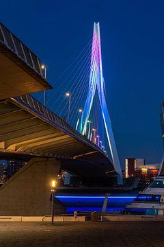 Unter der Erasmus-Brücke von Gerry van Roosmalen