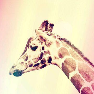 De rGiraffe von Didden Art