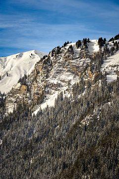 Verschneiter Berghang von Wouter van Woensel