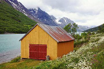 Zomer bij Kjosenfjord van Gisela Scheffbuch