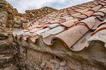 Dach von René Nicolaes