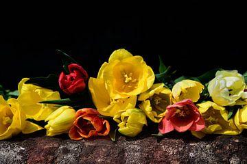 Bunte Tulpen von Ulrike Leone