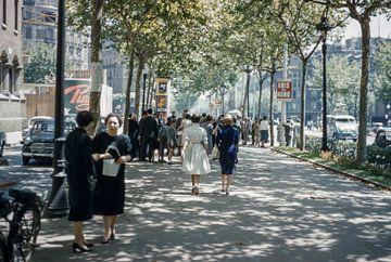 Mode années 50 sur Jaap Ros